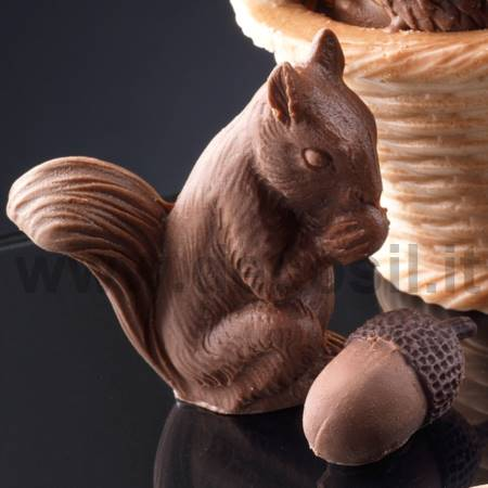 Squirrel Mold