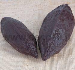 Stampo Frutto del cacao medio
