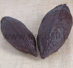 Big Cocoa Fruit Mold