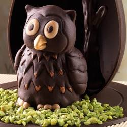 Owl mould Dotto - owl chocolate mould