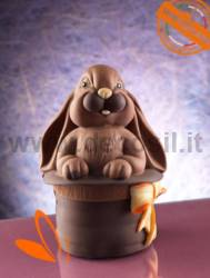 Bunny in the Magic Hat Egg mould