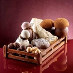 Moule Parmesan Parmigiano - fromage Italien