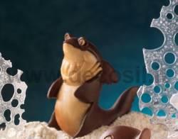 Moule Requin