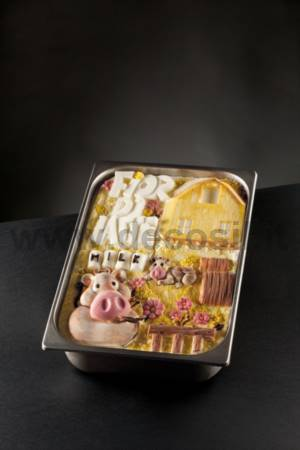 Fiordilatte Ice Cream Tablet mould