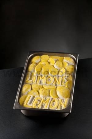 Lemon Ice Cream Tablet mold